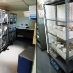 Animais utilizados na pesquisa experimental